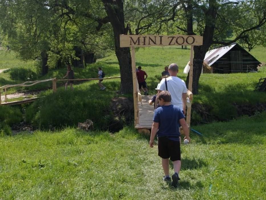 minizoo5